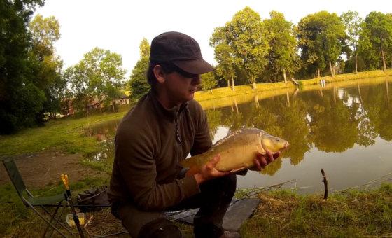 Video: červnový feeder na rybníku