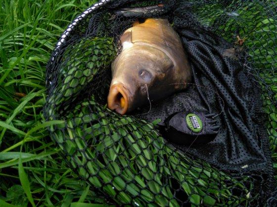 Recenze: Krmítka Patron Fishing