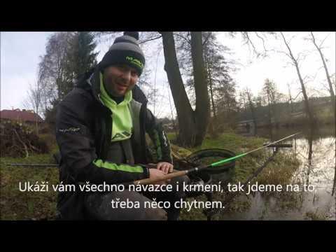 Video: Lov plotic v zimě