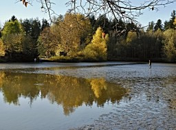 Podzimní výlovy rybníků na Třeboňsku 2019
