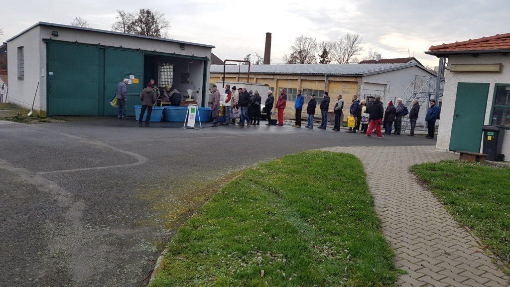 Předvánoční prodej ryb na rybochovném zařízení MO ČRS Pardubice