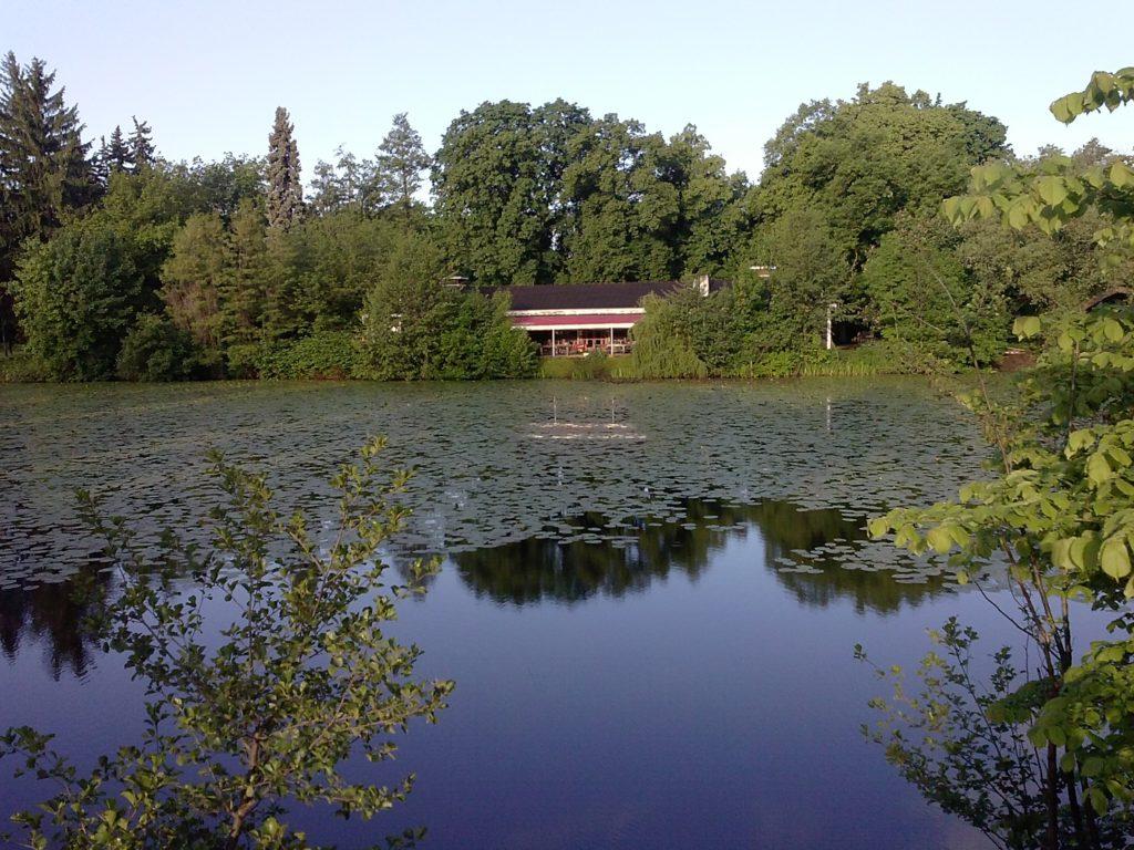 V listopadu začalo čištění Matičního jezera