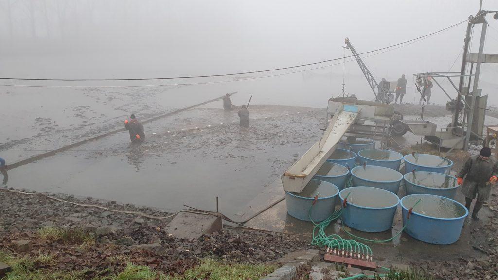"""Počasí rybářů """"přálo"""""""