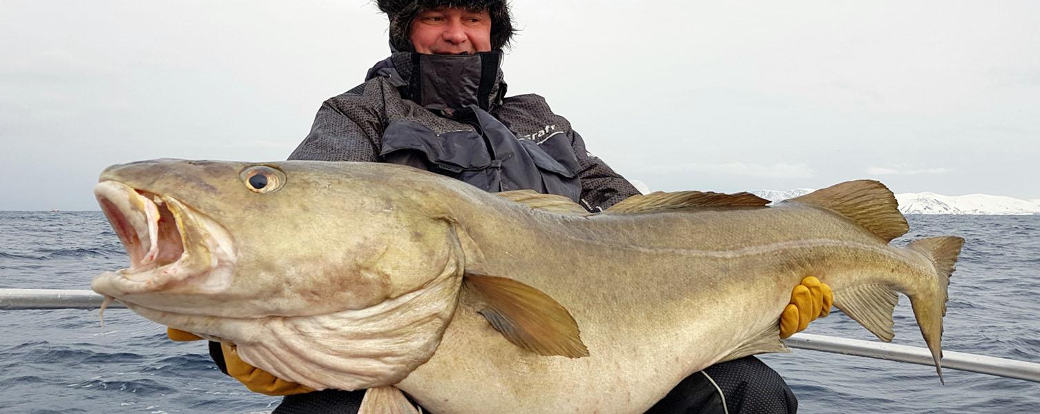 Video: Za rybami do Norska