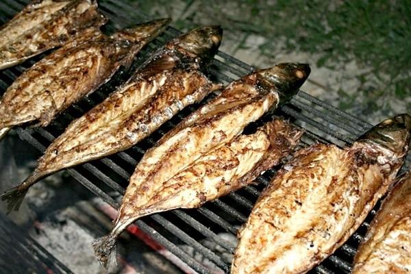 Makrela grilovaná na roštu - po 30 minutách
