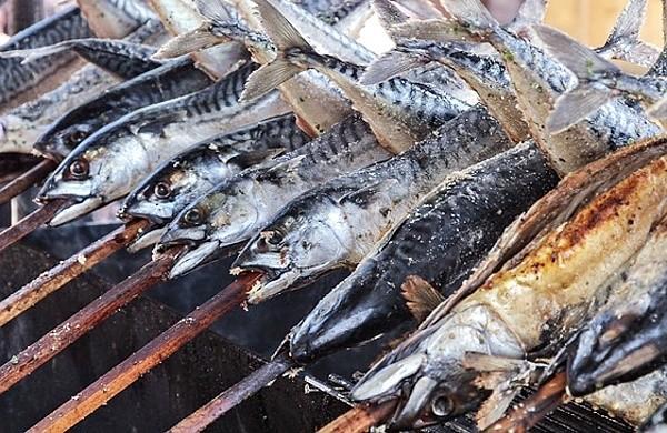 Ryby pečené na klacku nad ohněm - makrely jsou na ohni také velmi dobré!