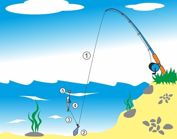 Chytání dravců na položenou - na rybí ocásek