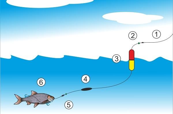 Montáž na dravce - trolling s mrtvou rybkou