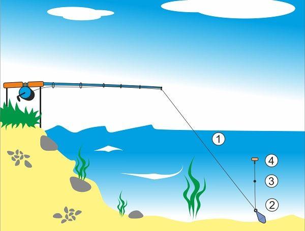 Chytání kaprů ve vodním sloupci - montáž s průběžným olovem
