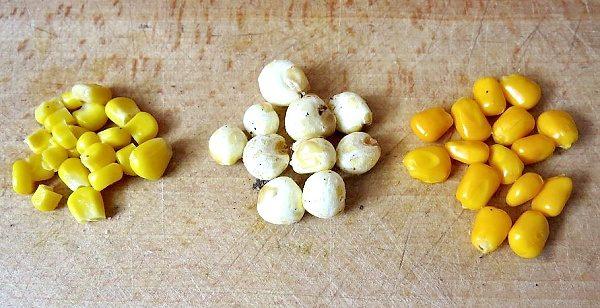 Kukuřice vrůzných podobách, sterilovaná, foukaná, maďarská vařená, ochucená
