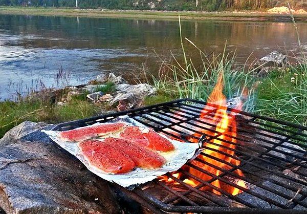 Ilusrační foto- rybí filety na alobalu