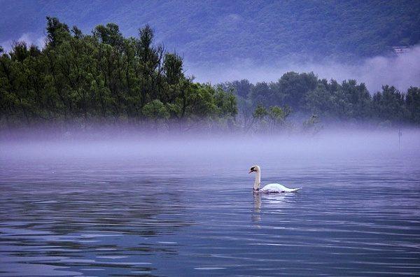 Ráno na vodě.