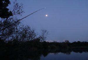 noc-chytani-feeder