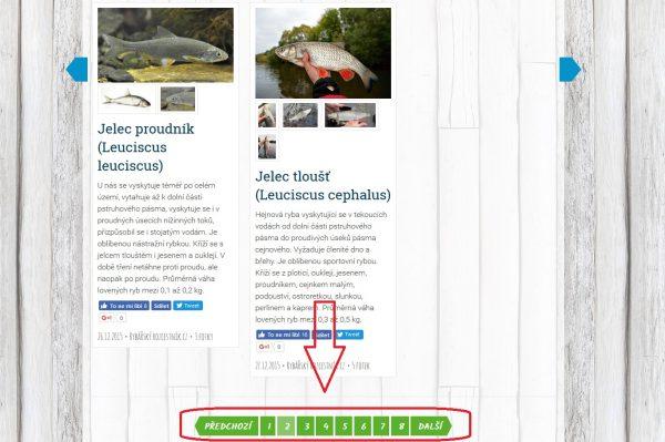 Listování v článcích a kategoriích po stránkách, lze přeskakovat!