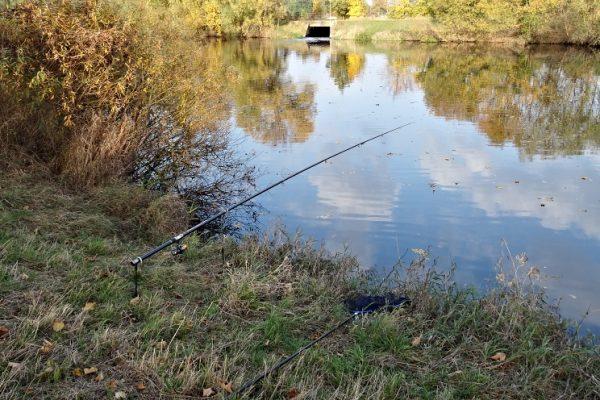 Chytání štik na živou rybku pověšenou pod splávkem pod špičkou dlouhého prutu.