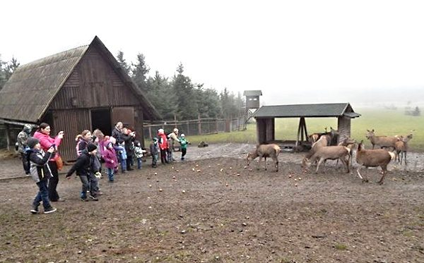 ČRS MO Rožmitál pod Třemšínem - v oboře