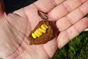 kukurice-testo-obalovaci1