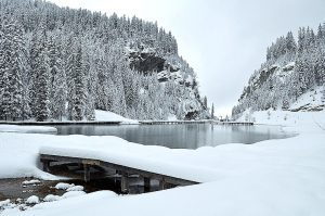 zimni-krajina-sníh