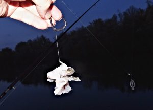 rybí-špízy-maso3
